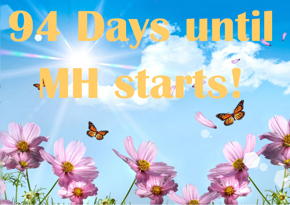 MH Countdown 2019 floweres and butterflies